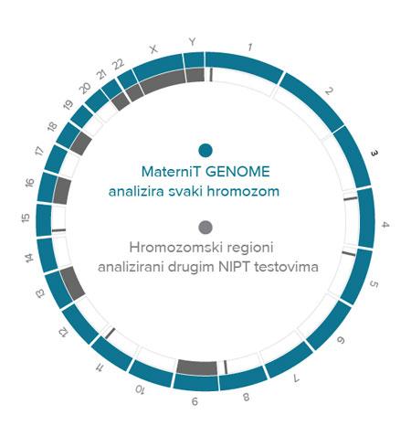 Maternit GENOME analizira svaki hromozom